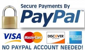 PayPal_Convenient_Payments