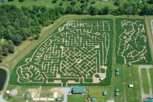 Roba Family Farms - Corn Maze